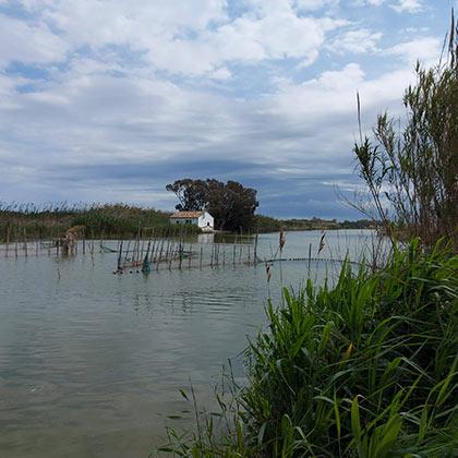 Redolins o puestos de pesca de la Albufera